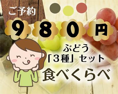 色とりどり・沼隈&福山産ぶどう食べ比べ