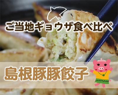 餃子食べ比べ【島根】おいしいからどっちも食べて!